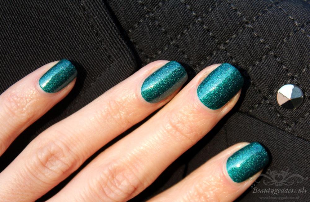 picture_polish_dragonfly_02