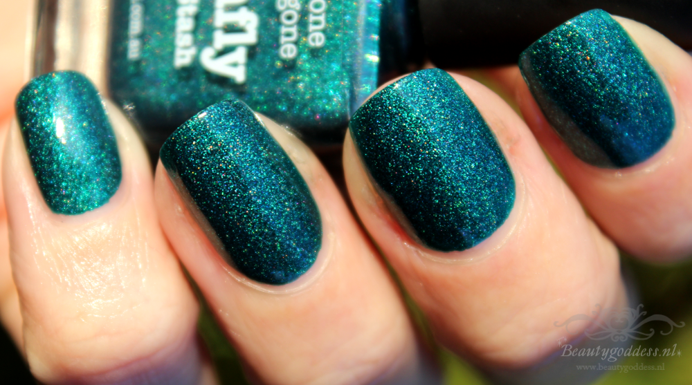 picture_polish_dragonfly_04