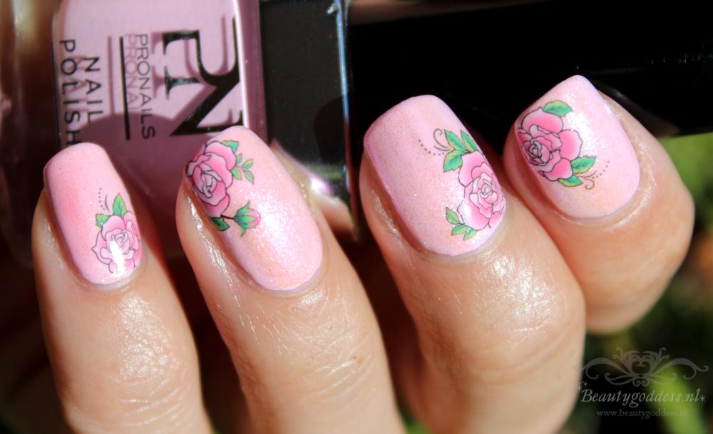 sweet_summer_roses_02