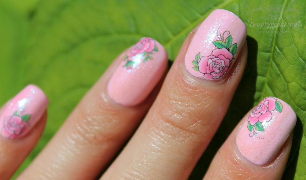 sweet_summer_roses_05