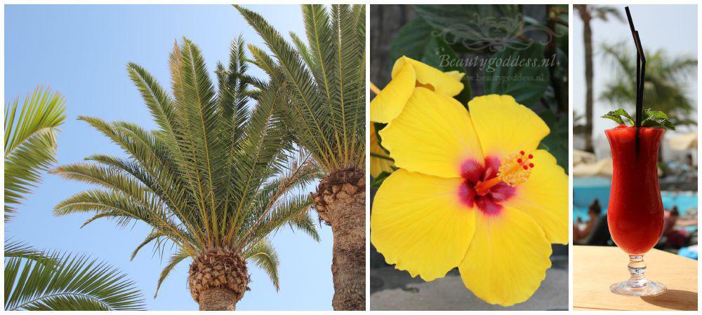 Gran_Canaria_008